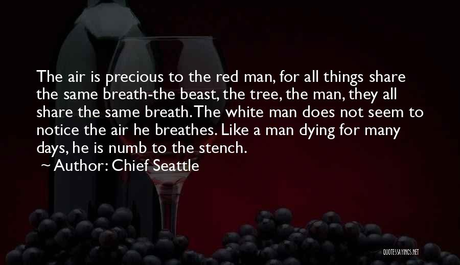 Chief Seattle Quotes 2154158