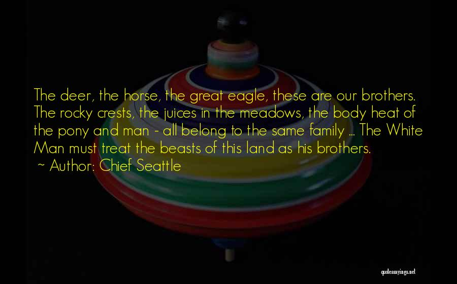 Chief Seattle Quotes 2267107