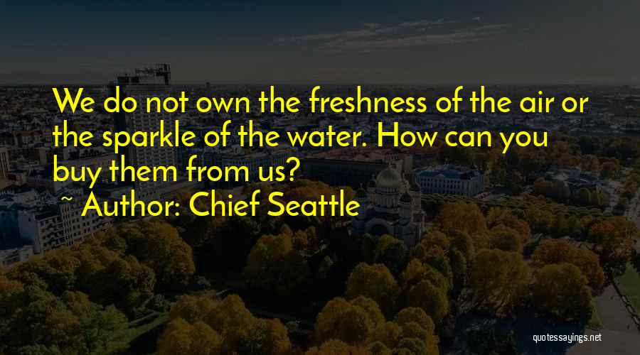 Chief Seattle Quotes 879785