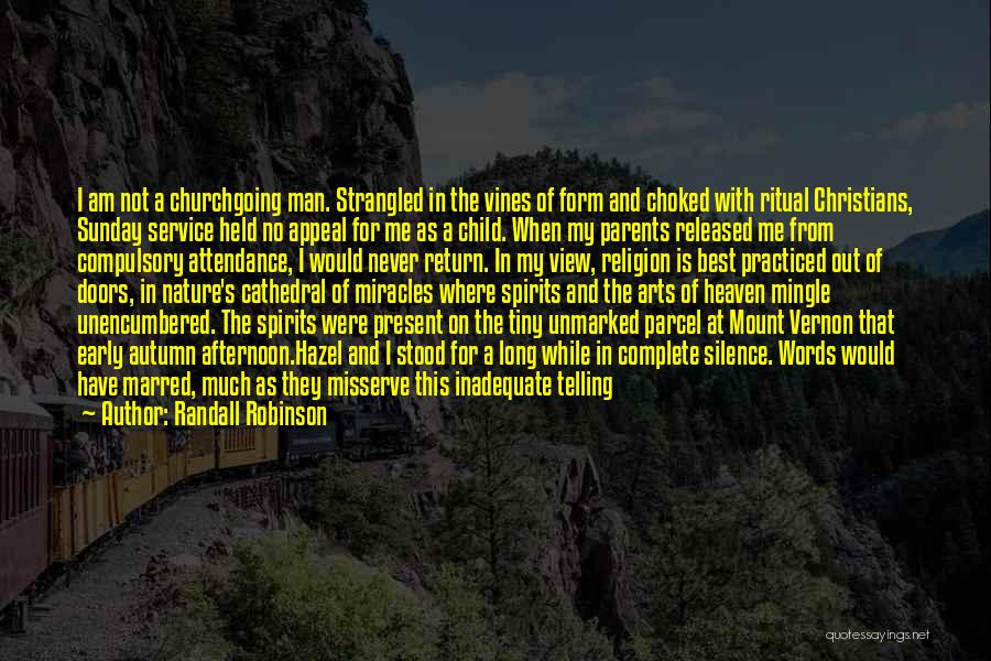 Child In Heaven Quotes By Randall Robinson