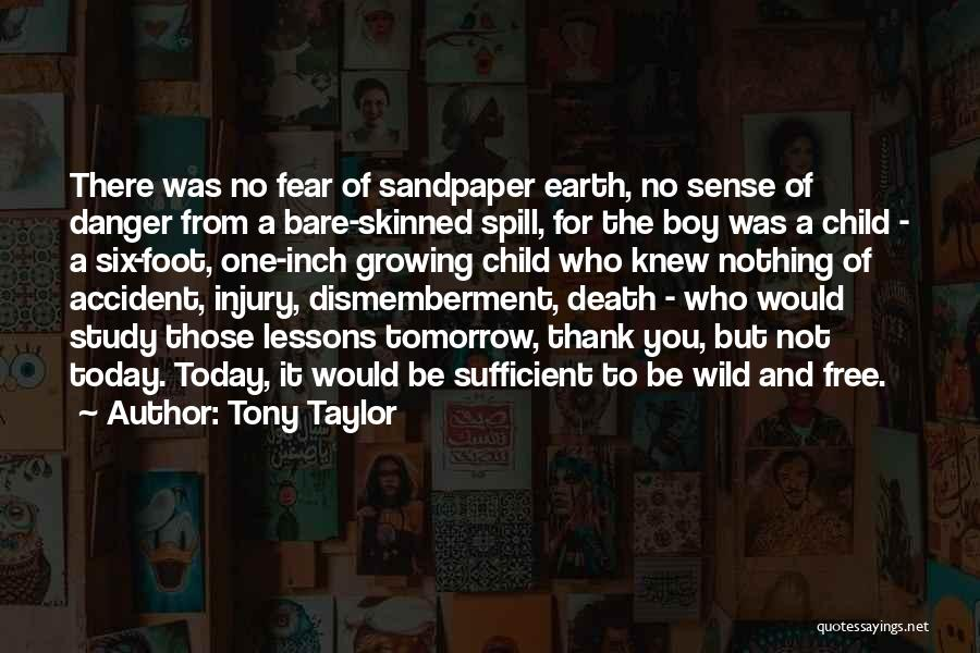 Child Innocence Quotes By Tony Taylor