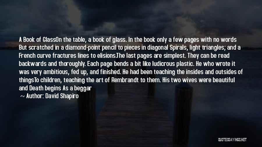 Child Teaching Quotes By David Shapiro