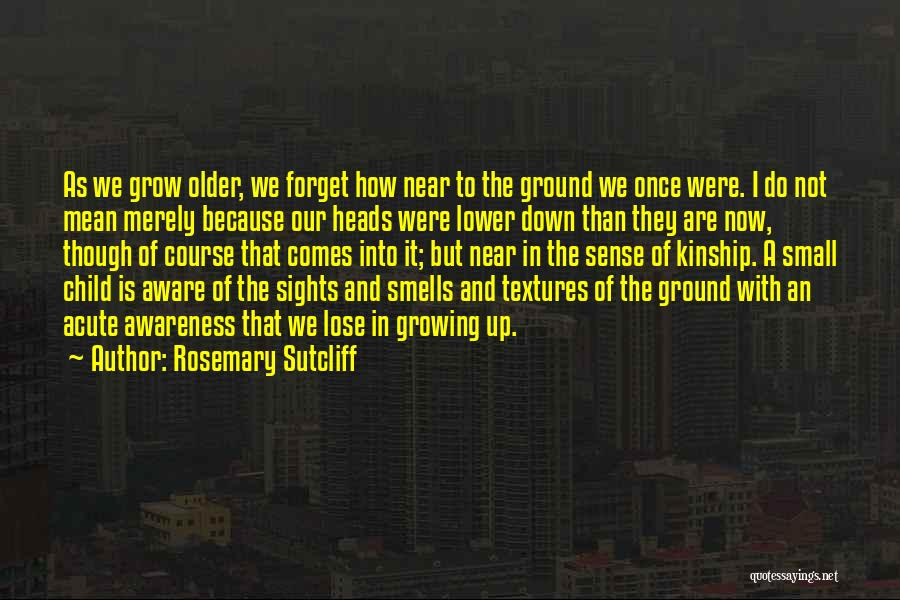 Childhood Growing Up Quotes By Rosemary Sutcliff