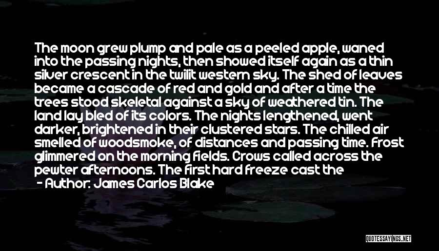 Chilled Night Quotes By James Carlos Blake