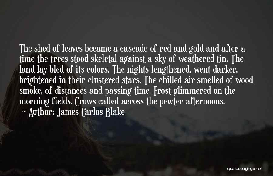 Chilled Out Quotes By James Carlos Blake