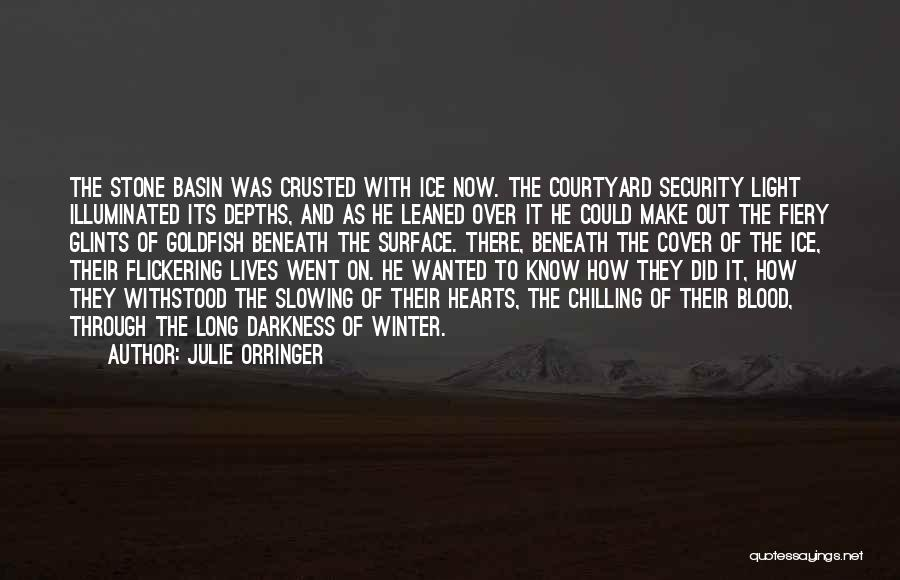 Chilling Out Quotes By Julie Orringer