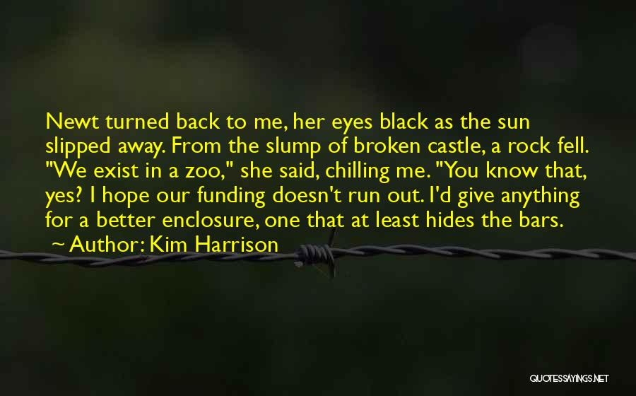 Chilling Out Quotes By Kim Harrison