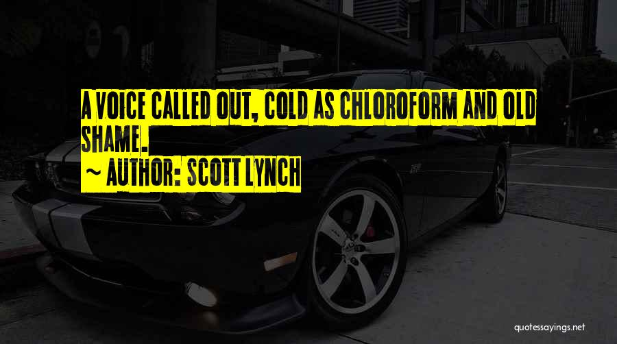 Chilling Out Quotes By Scott Lynch