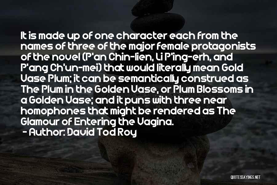 Chin Up Quotes By David Tod Roy