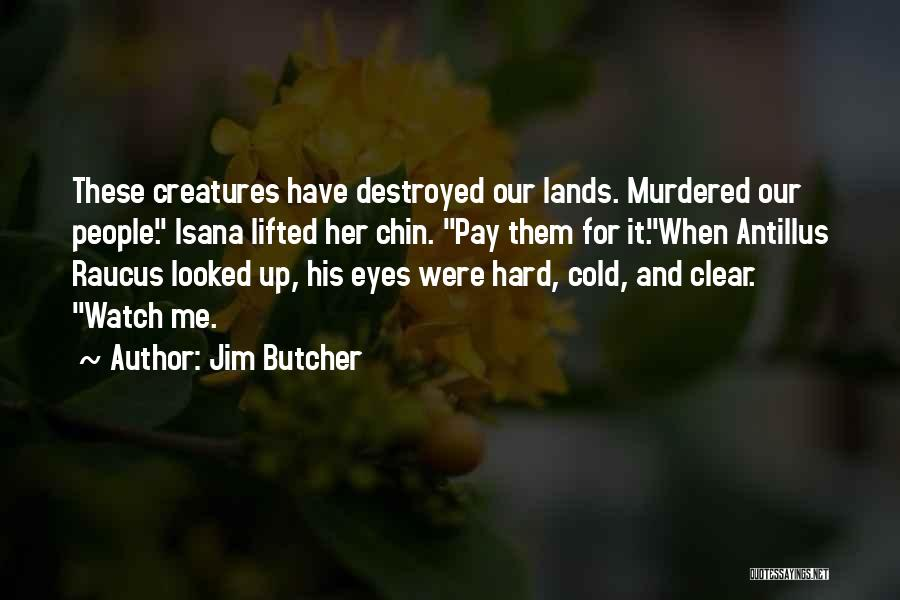 Chin Up Quotes By Jim Butcher