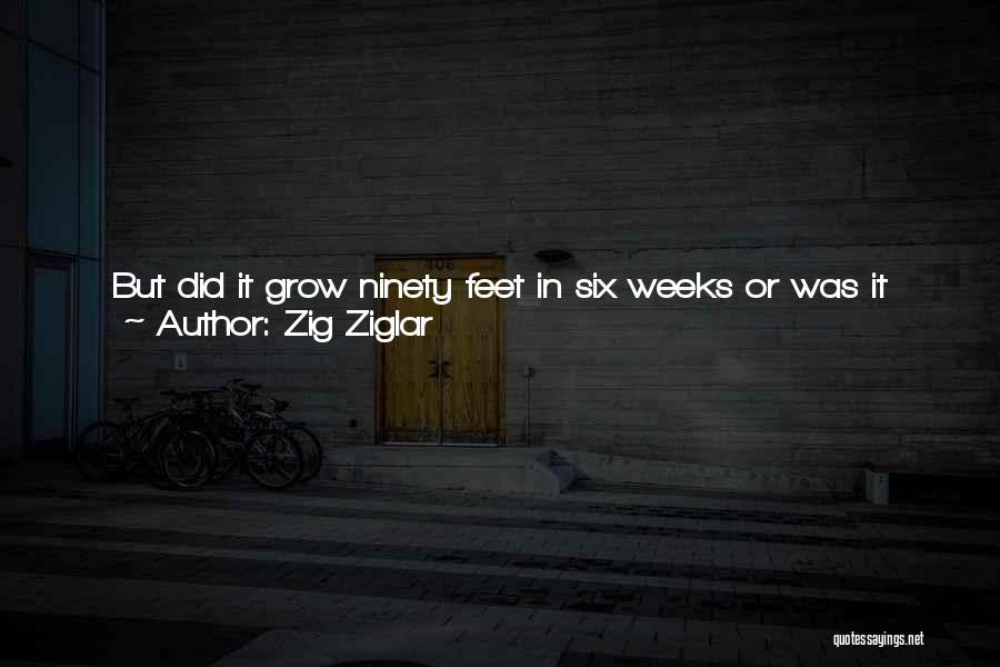 Chinese Bamboo Quotes By Zig Ziglar