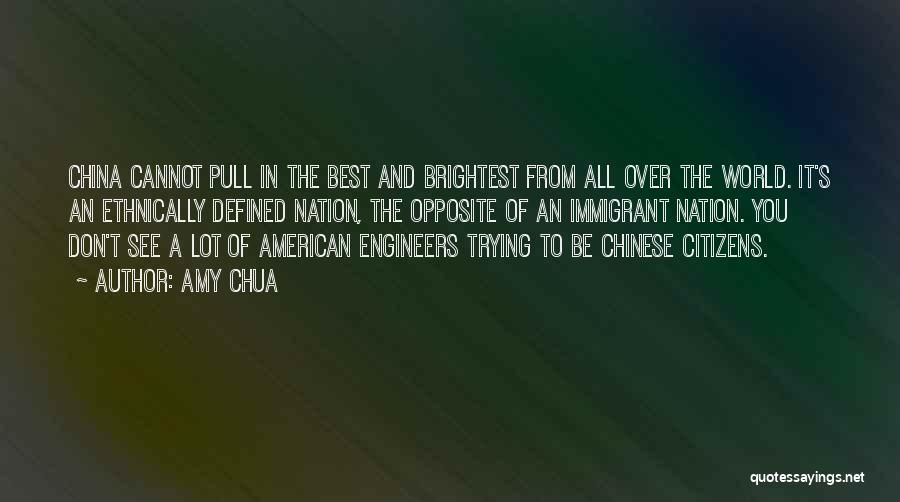 Chinese Immigrant Quotes By Amy Chua