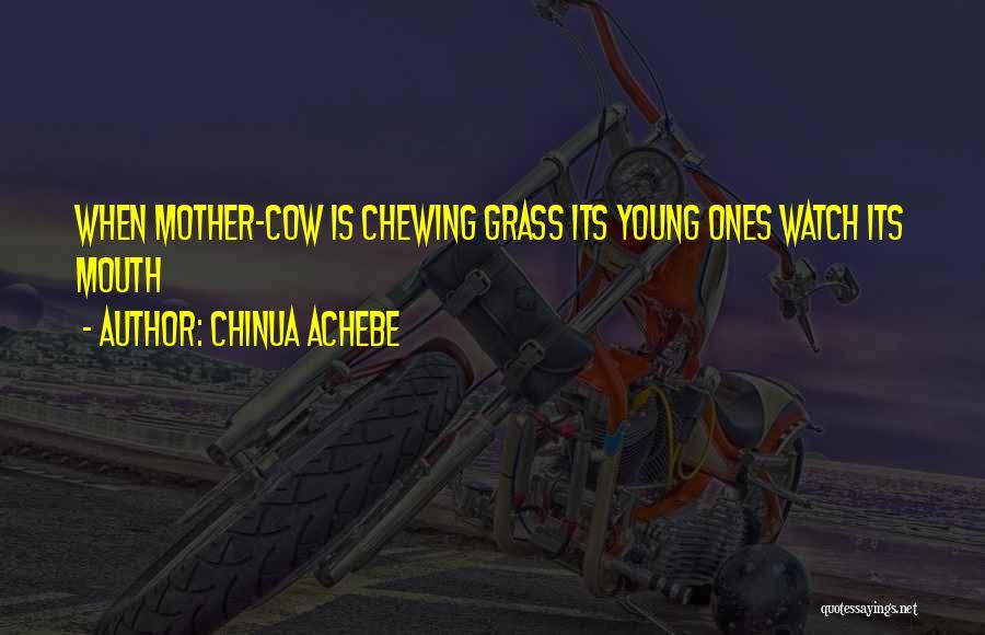 Chinua Achebe Quotes 1255049