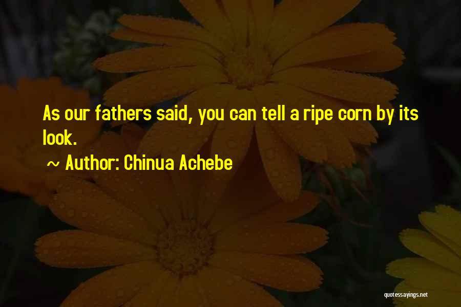Chinua Achebe Quotes 1865035