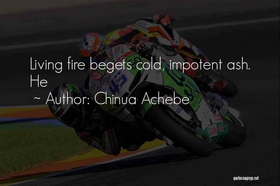 Chinua Achebe Quotes 2241176