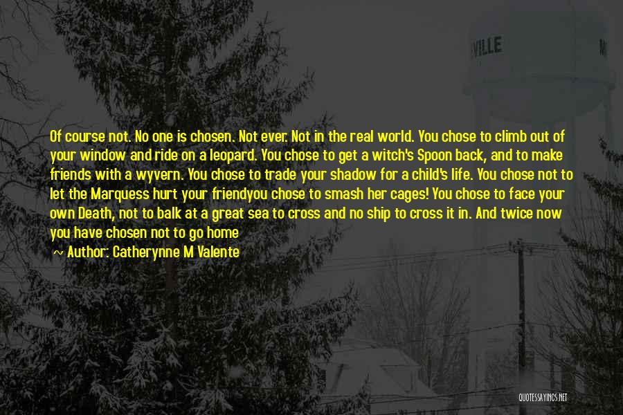 Choose Your Own Friends Quotes By Catherynne M Valente