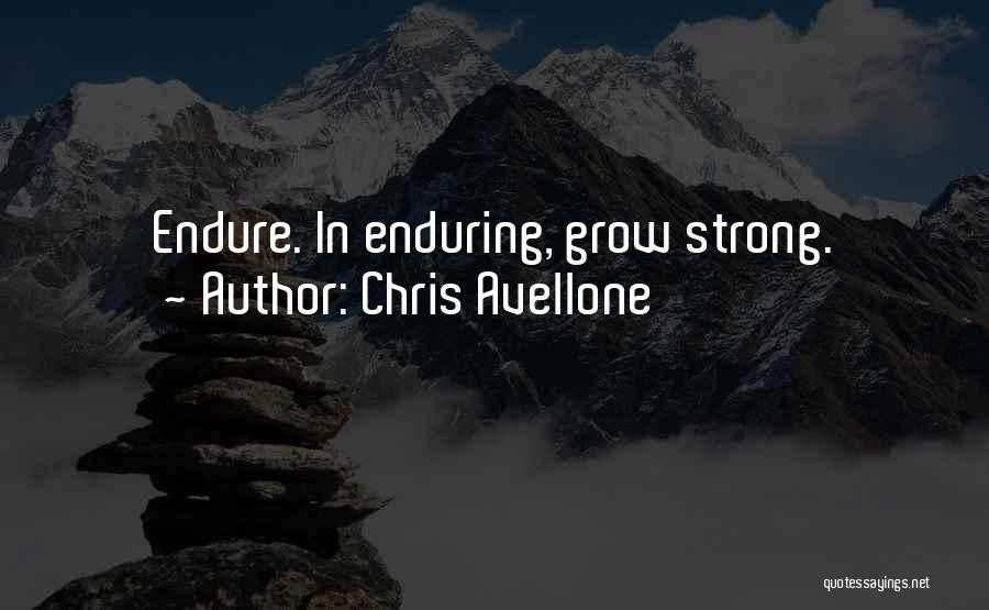 Chris Avellone Quotes 443974