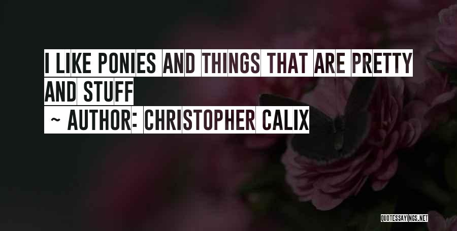 Christopher Calix Quotes 1198889