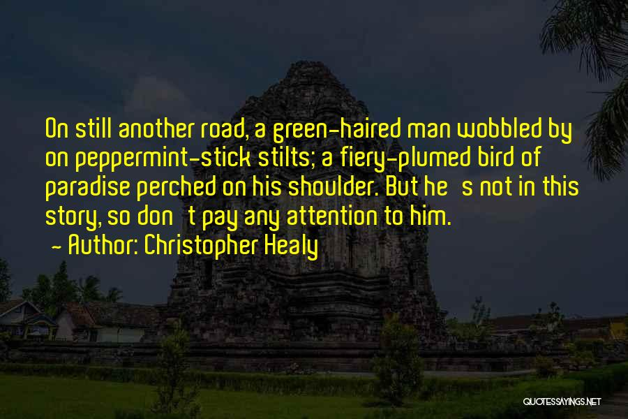 Christopher Healy Quotes 2062151