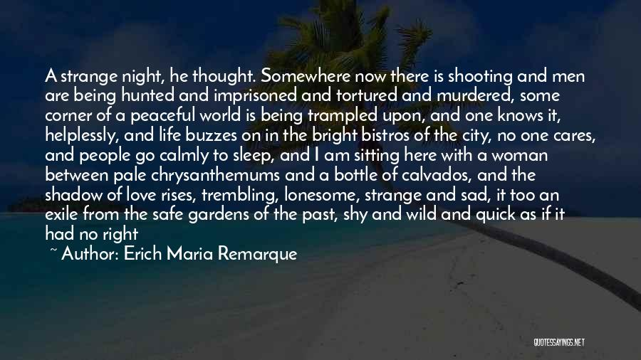 Chrysanthemums Quotes By Erich Maria Remarque