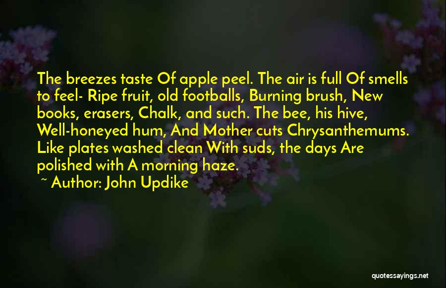 Chrysanthemums Quotes By John Updike