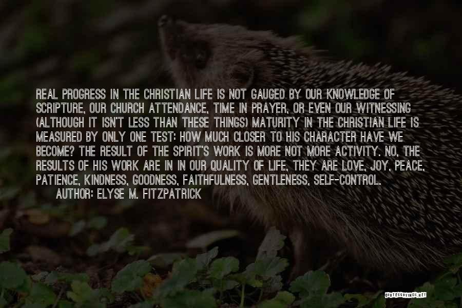 Church Attendance Quotes By Elyse M. Fitzpatrick