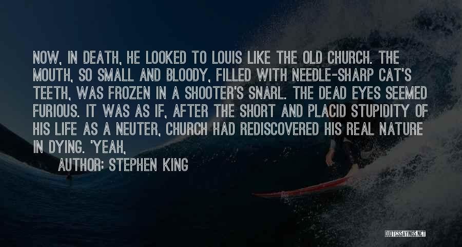 Church The Cat Quotes By Stephen King