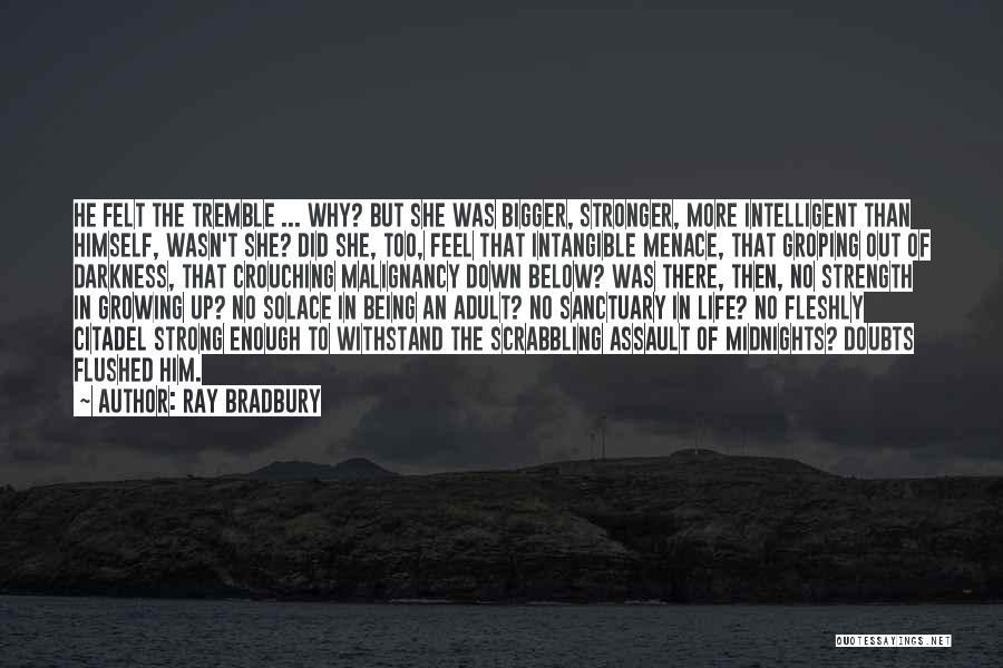 Citadel Quotes By Ray Bradbury