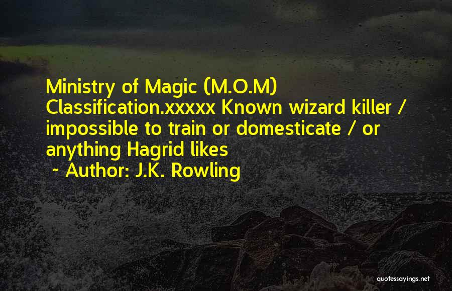 Classification Quotes By J.K. Rowling
