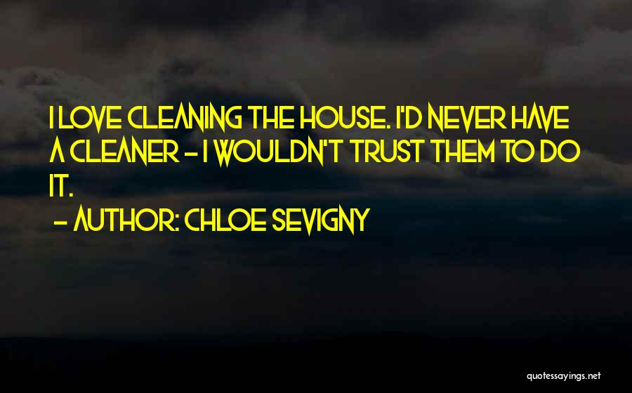 Cleaning The House Quotes By Chloe Sevigny