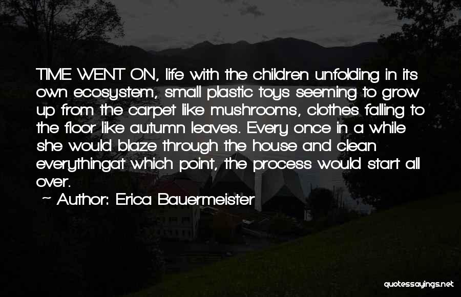Cleaning The House Quotes By Erica Bauermeister