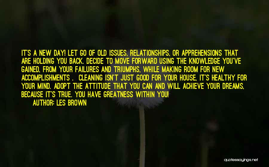 Cleaning The House Quotes By Les Brown
