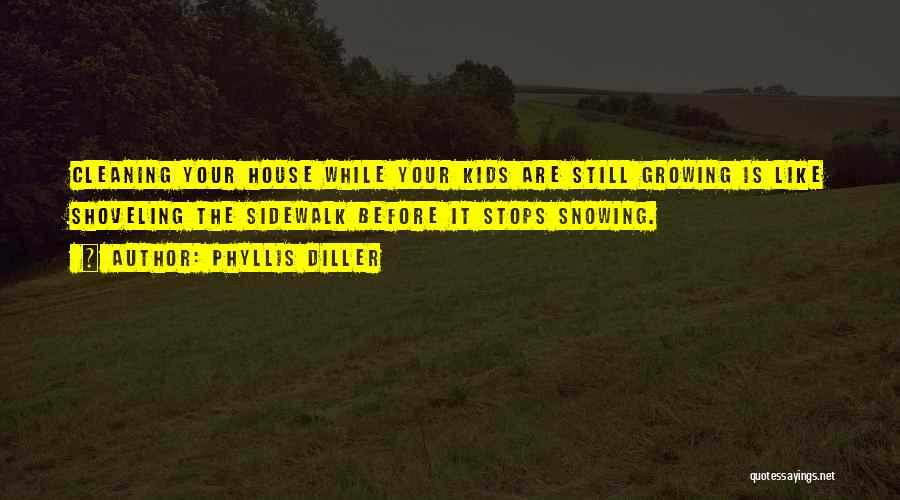 Cleaning The House Quotes By Phyllis Diller