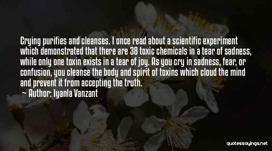 Cleanse Yourself Quotes By Iyanla Vanzant