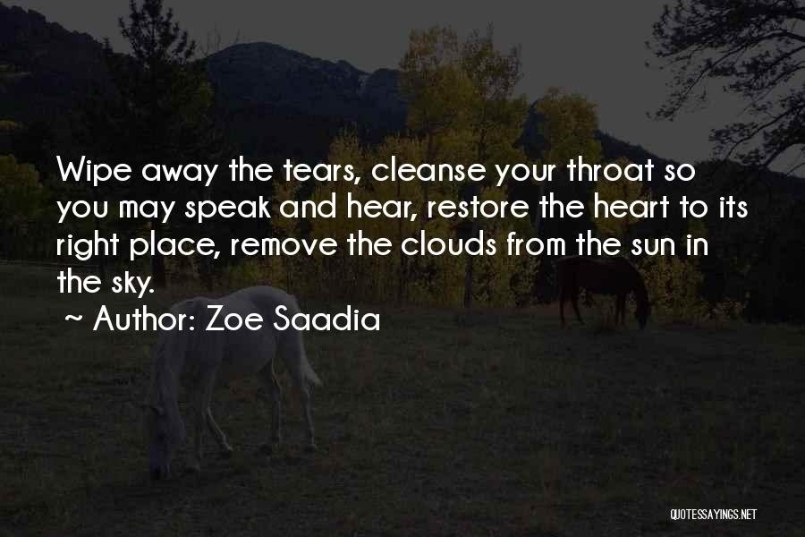 Cleanse Yourself Quotes By Zoe Saadia