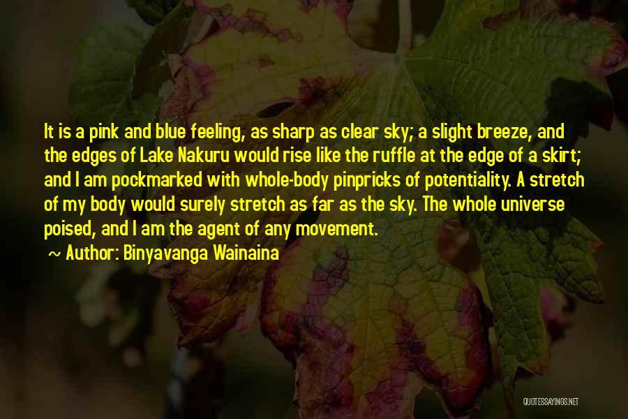 Clear Blue Sky Quotes By Binyavanga Wainaina