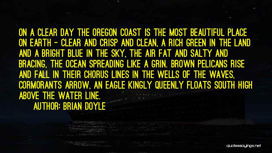 Clear Blue Sky Quotes By Brian Doyle