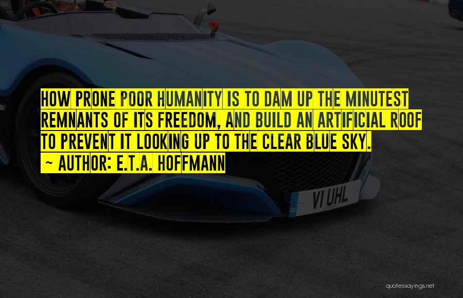 Clear Blue Sky Quotes By E.T.A. Hoffmann