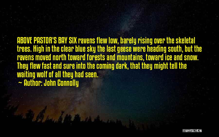 Clear Blue Sky Quotes By John Connolly