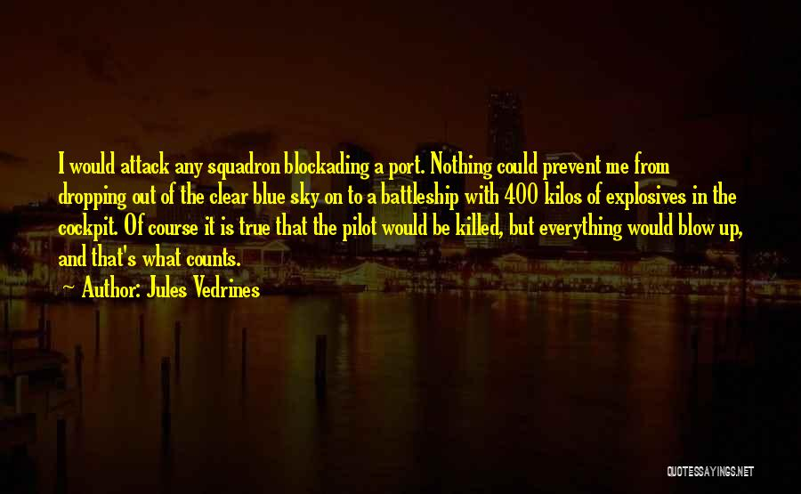 Clear Blue Sky Quotes By Jules Vedrines