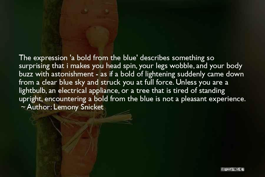 Clear Blue Sky Quotes By Lemony Snicket