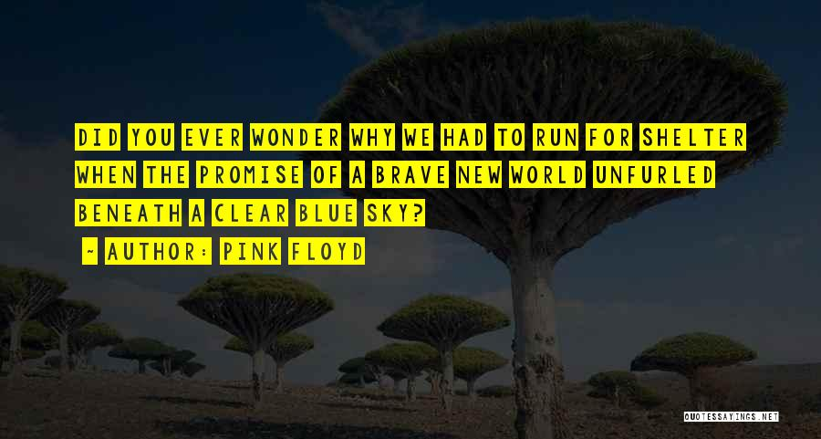 Clear Blue Sky Quotes By Pink Floyd