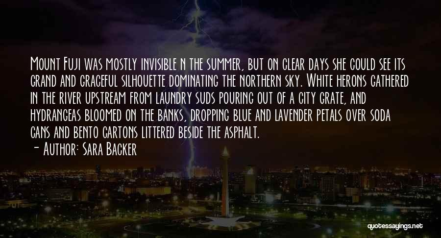 Clear Blue Sky Quotes By Sara Backer