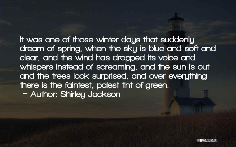 Clear Blue Sky Quotes By Shirley Jackson