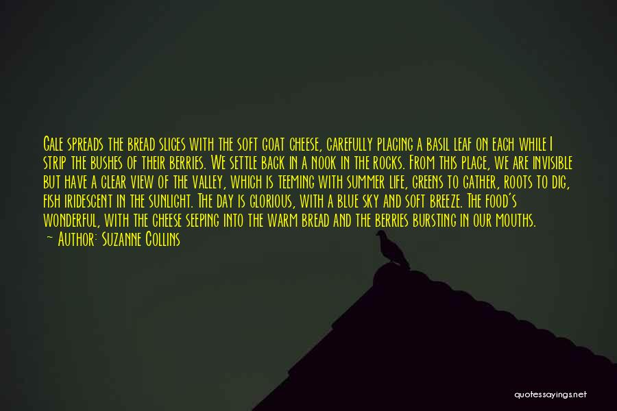 Clear Blue Sky Quotes By Suzanne Collins