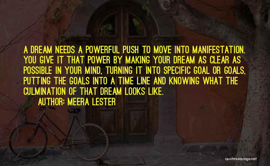 Clear Goals Quotes By Meera Lester
