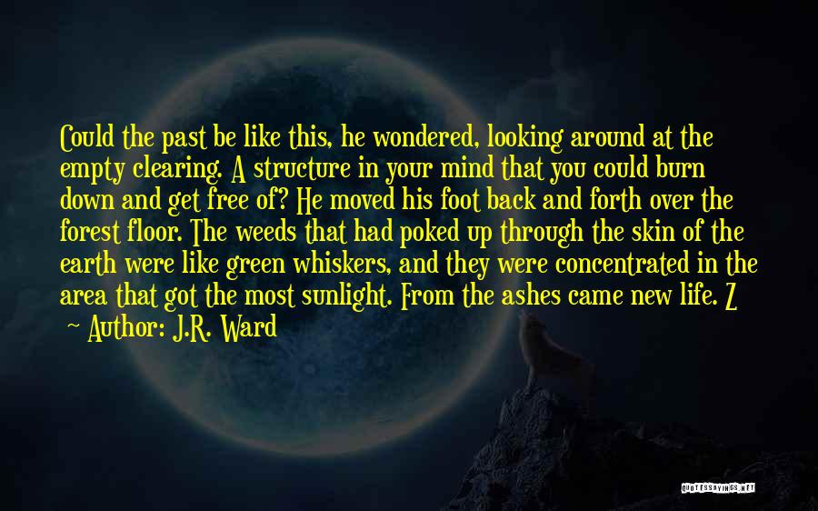 Clearing The Mind Quotes By J.R. Ward