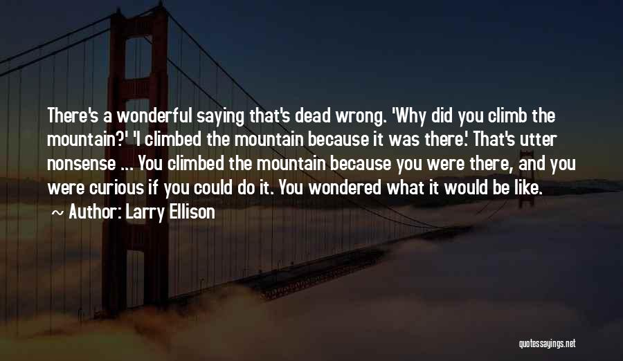Climbed A Mountain Quotes By Larry Ellison