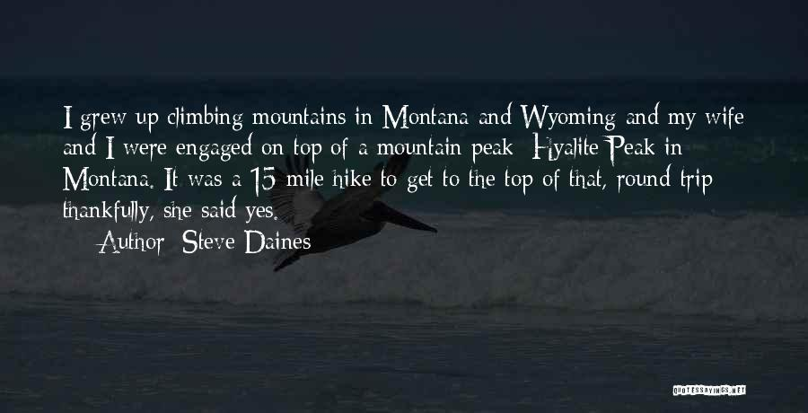 Climbing To The Top Of The Mountain Quotes By Steve Daines