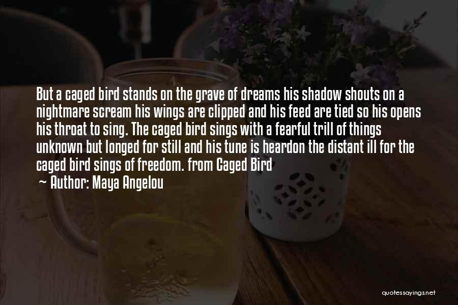 Clipped Wings Quotes By Maya Angelou